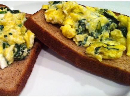 Plakta kiaušinienė ant skrebučio ar duuonos